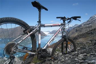rentals_bike